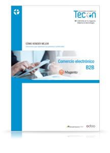 Guía Comercio electrónico B2B