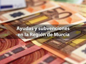 Ayudas y subvenciones en la Región de Murcia