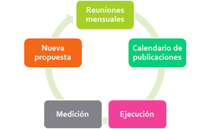 fases redes sociales