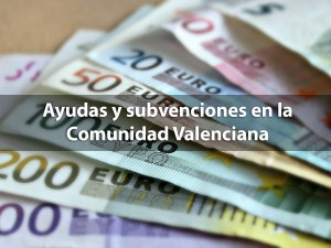 ayudas y subvenciones en la comunidad valenciana