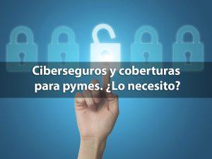 Ciberseguros y coberturas para pymes