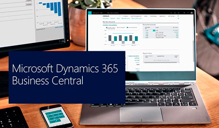 Guía Dynamics Business Central