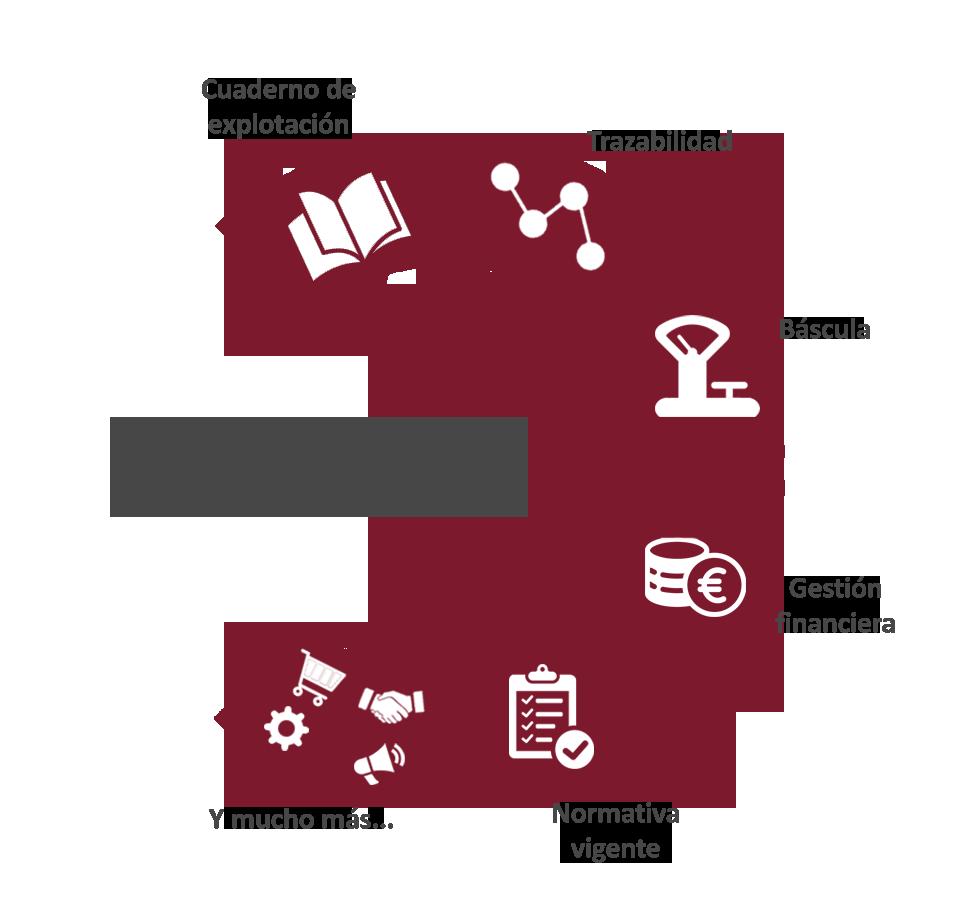 ERP Uvatec de gestión de bodegas