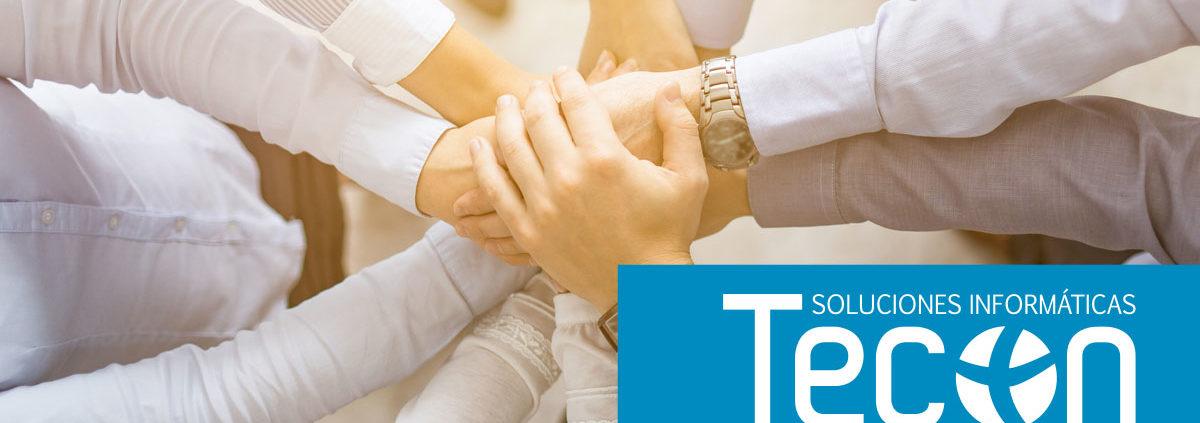 grupo tecon ofrece licencias gratis de office 365