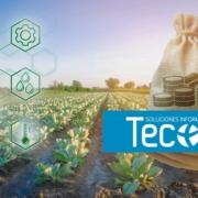 FOCAL 2021: Ayudas para fomentar la calidad agroalimentaria en Castilla-La Mancha
