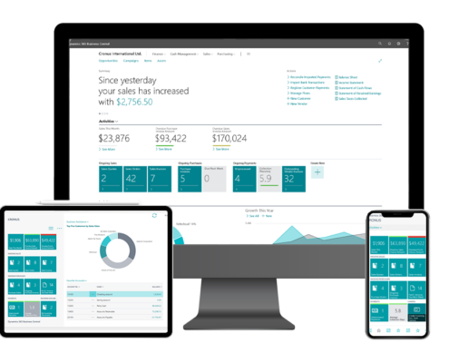 Entorno Business Central multidispositivo - Tecon